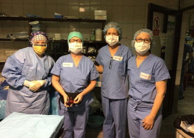 The Operating Room Staff Keri OBrien, Kathleen Mercure, Heather Horsan, and Connie Bouvier