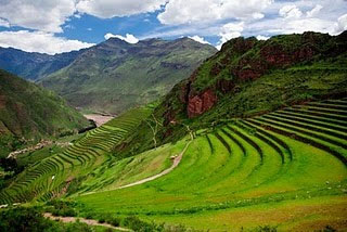 The terraced landscape of the Pisac ruins that are still farmed to this day